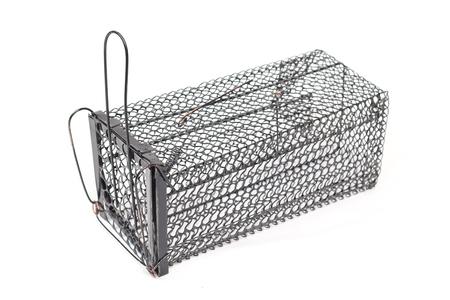dead rat: Cage Rat Trap on white background