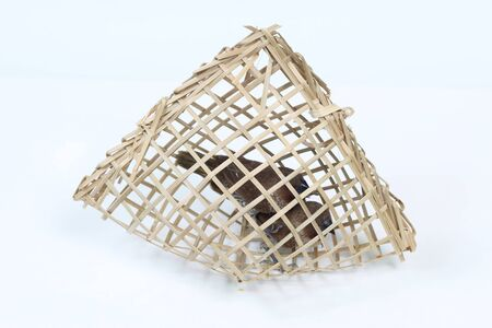 philanthropy: Bird cage sparrow that people bought to let.