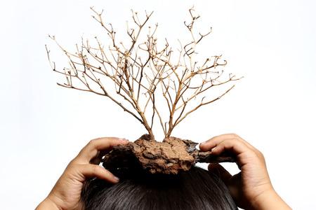 head phones: Dead trees are dry, put on head phones white backdrop.