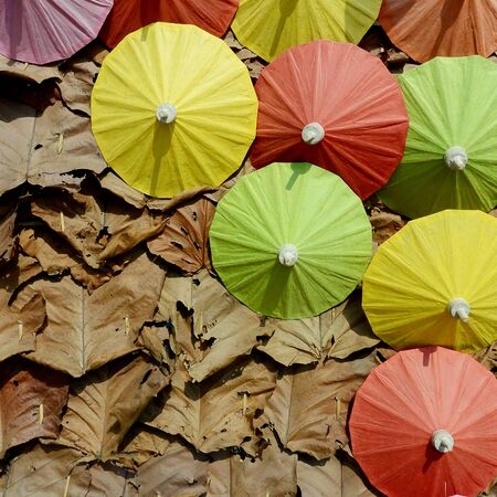 dried leaf: Colorful umbrellas on a background made of a dried leaf.