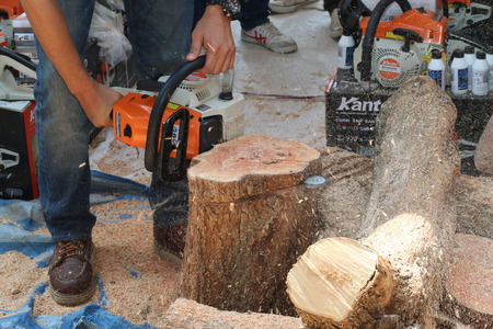 febuary: Chiangmai, Thailand - Febuary 29, 2015: Male employees are demonstrating chainsaw loggers , Chiangmai, Thailand.