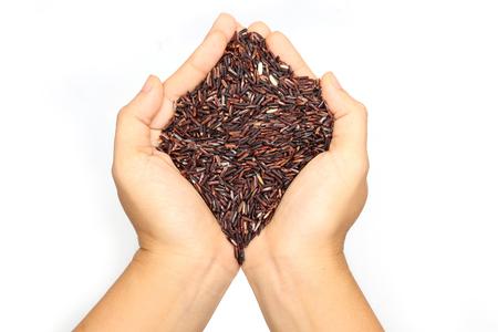 Hand holding riceberry rice isolated on white background.
