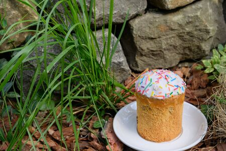 Easter cake decorated with colored powder lies on a white saucer in outdoor, around the spring grass. on the stone wall backround. Close up. No people. Concept of the Christian holiday of Holy Easter