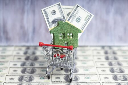 A small green grass house lies in a shopping trolley. A pack of hundred-dollar bills.