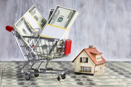 A small copy of the house stands on the background of a shopping trolley with packs of hundred-dollar bills.