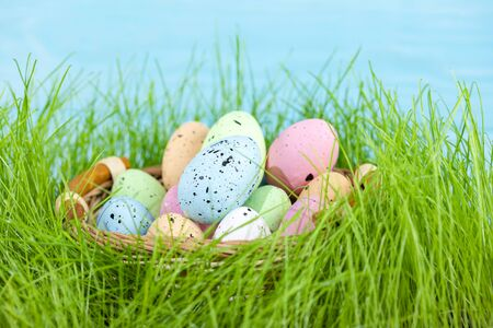 Colorful multi-colored Easter eggs lie on the green grass. Painted eggs in the basket on the lawn.