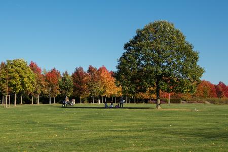 autumn landscape, park with bright autumn colors Stock Photo