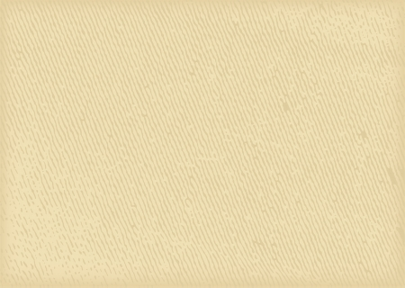 papyrus: Textural background paper earthen colors Illustration