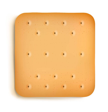 crackers: Cracker aislado sobre fondo blanco