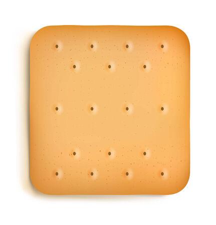 Cracker isolated on white background Vector