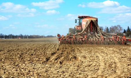 siembra: la siembra de primavera de los cultivos de cereales