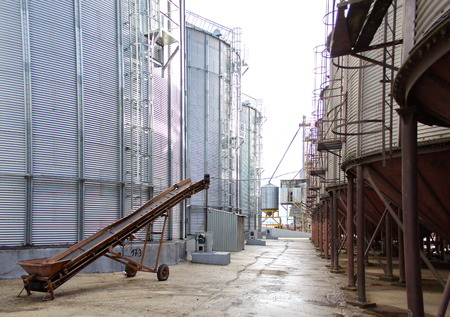 conveyors: belt conveyor in the corridor between the tanks silos