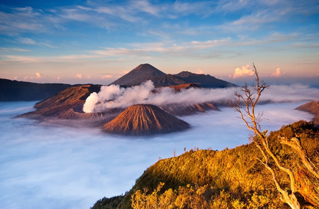 Bromo Mountain in Tengger Semeru National Park at sunrise, East Java, Indonesia Stock Photo