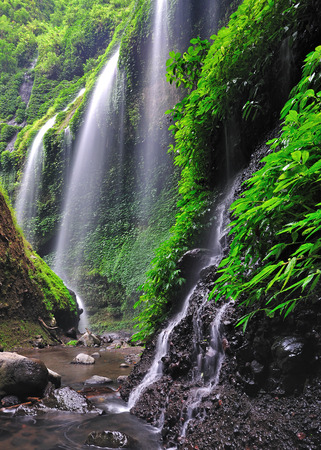 Madakaripura Waterfall in Bromo Tenger Semeru National Park, East Java, Indonesia  photo