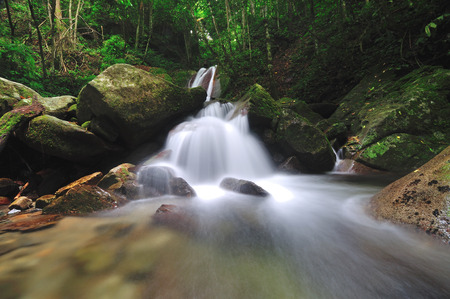 sandakan: Kipungit waterfall in Poring Hot Spring, Kinabalu National Park. Public waterfall in Kinabalu National Park. It is one of the main attraction in the park.