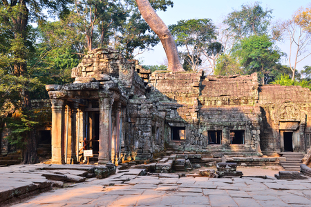 phrom: Ta Phrom temple illuminated by early morning light. Ta Phrom is also known as jungle temple. Its one of the famous temple in Angkor wat temple complex in Siem Reap, Cambodia. Stock Photo