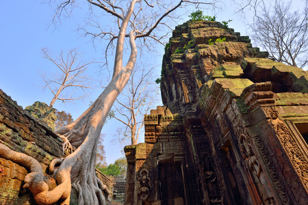 phrom: Ta phrom temple with big tree and rubble. Ta Phrom is also known as jungle temple. Its one of the famous temple in Angkor wat temple complex in Siem Reap, Cambodia.