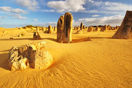 Le désert des Pinnacles, Australie Occidentale. Banque d'images - 43474288