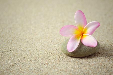 Frangipani oder Plumeriablume auf einem Zenstein mit Sandhintergrund. Foto wurde mit Vintage-Retro-Filter hinzugefügt, Kopie Speicherplatz verfügbar