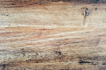 wood textures: Wood background with textures