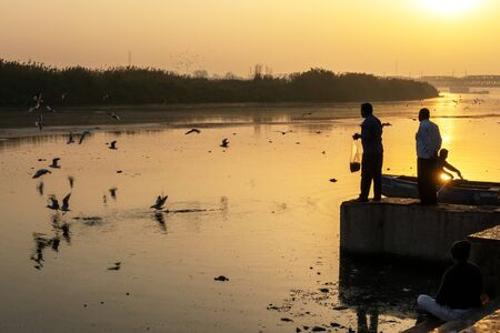 New Delhi, India - March 04, 2018: Man feeding Siberian gulls at Yamuna river. The Siberian gulls is a migratory birds reach India every year during winters. Imagens - 140919558