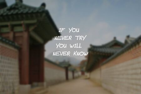 Inspirational Quotes - If you never try you will never know.