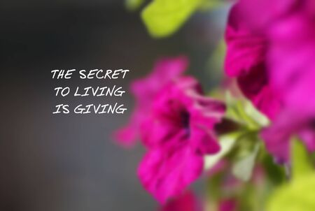 Inspirational Quotes - The secret of living is giving. Imagens