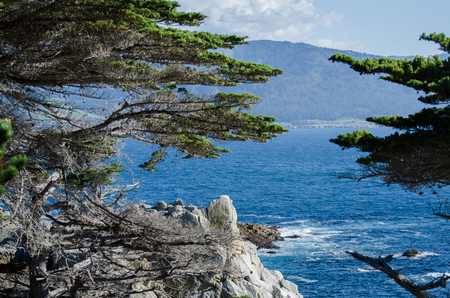 The Lone Cypress   seen from the 17 Mile Drive in Pebble Beach of  Monterey Peninsula. California. Stock Photo