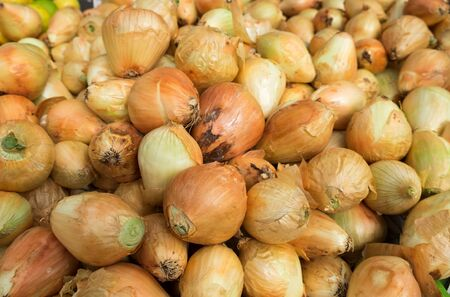 The new harvest onions at local farm market Banque d'images