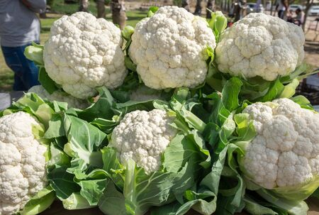Cauliflower for sale at the street farmers market