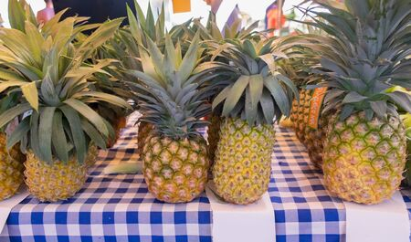 TEL-AVIV, ISRAEL - JANUARY 11, 2019: Big organic pineapples sold on farmers market
