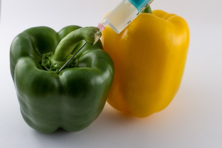 Bellpepper with a syringe photo