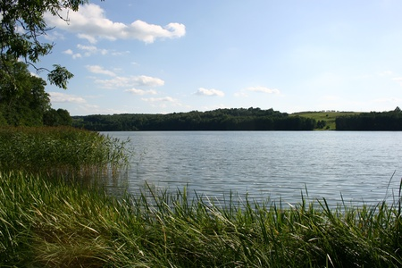 Shore of a calm lake with a small hill in the background in summer