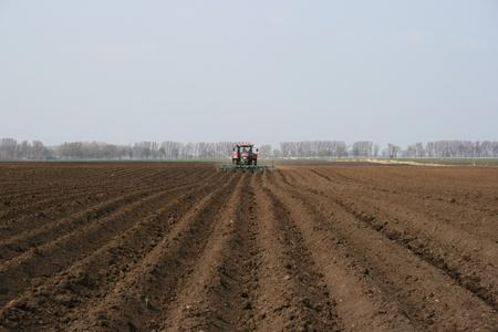 Tractor plowing rows on a field in spring Standard-Bild