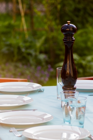 Table layed for dinner on a summer evening outdoors Imagens