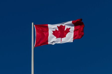 Flag of Canada in strong wind in front of a deep blue sky