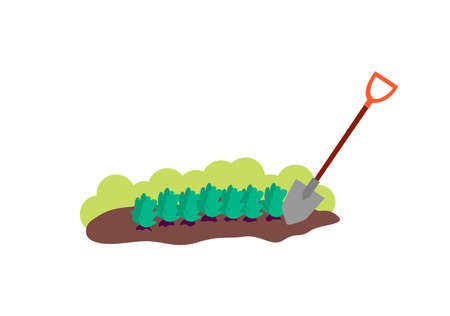 Patch of brown soil with plants and shovel - cartoon piece of ground