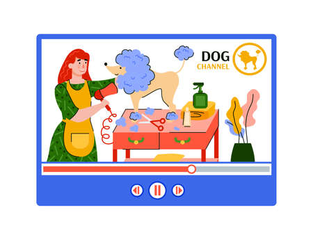 Pet grooming or dog wash video channel - online tutorial of animal groomer washing and drying a poodle on salon table. Isolated illustration of media player