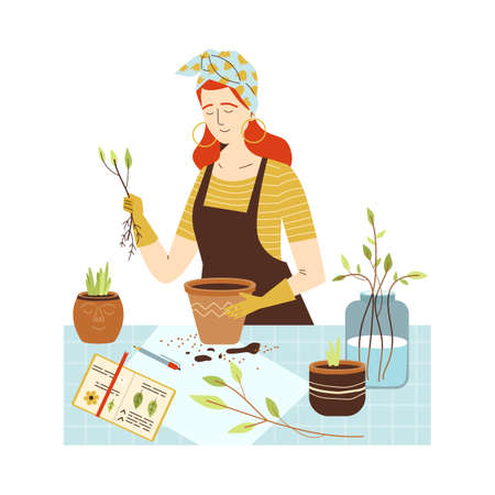 Woman planting plants and herbs into pots, flat vector illustration isolated.