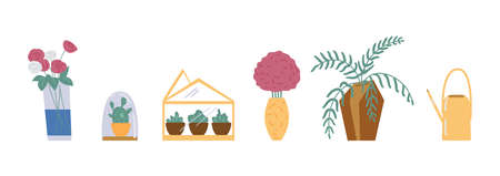 Vector set of house green plants and flowers in pots selling in flower shops.