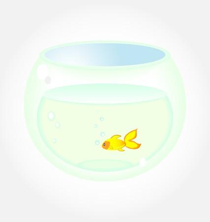 Golden Fish In Aquarium Stock Vector - 7903145