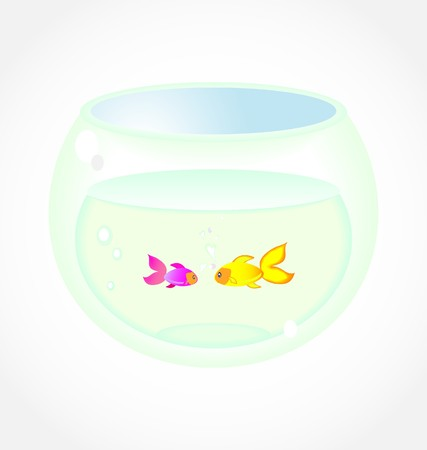 two fishes in aquarium Stock Vector - 7903149