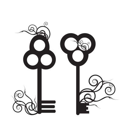 skeleton key: Old Skeleton Key