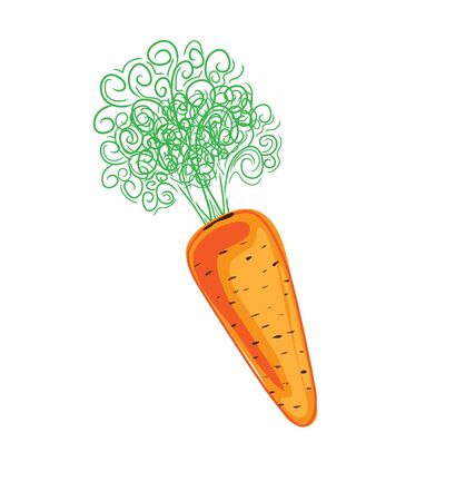 vegetable fat: Carrot