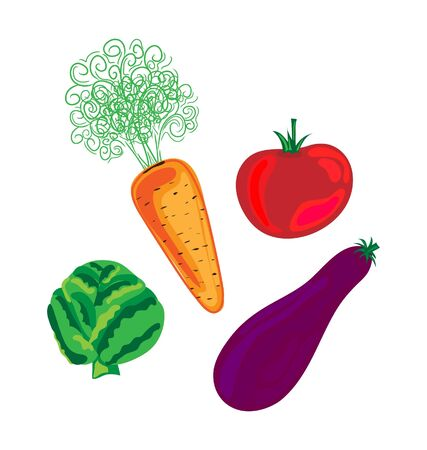 Fresh vegetables- Vector