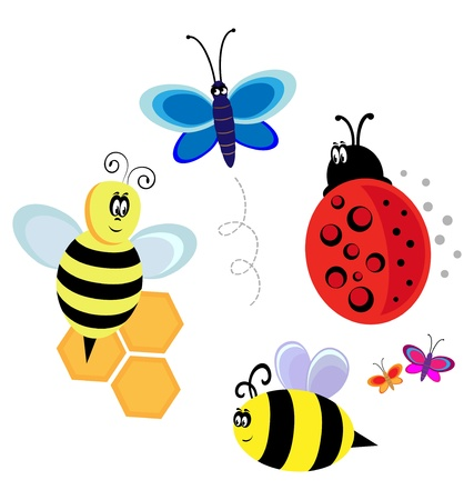 vector characters  bugs, bee and butterfly Vector