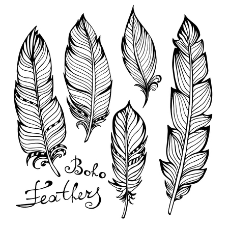 peacock feathers: Hand drawn bird black feathers closeup isolated on white background set. Boho style. Vector illustration