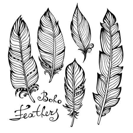 peacock feathers: Pájaro drenado mano plumas negras primer aislado en fondo blanco conjunto. Estilo Boho. Ilustración vectorial