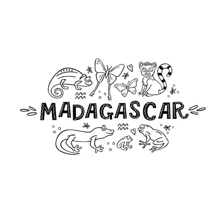Madagscar hand written word with doodle animals of Madagascar around. Chameleon, butterfly, lemur, gekko, frog. Vector illustration  イラスト・ベクター素材