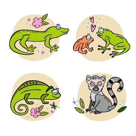 Set of cute handdrawn Madagascar animals. Frog, chameleon, gekko, lemur. Hand drawn vector illustration with design elements.